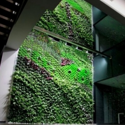 Spain's largest vertical garden was just officially unveiled!