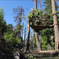 Journey into the backwoods of Oregon with the Shwood crew to construct a community hideaway in the trees. The over sized nest is intended to inspire others to make the trek into the woods surrounding Mt. Hood.