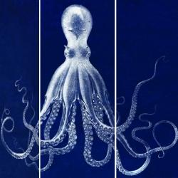 Lord Bodner's Octopus