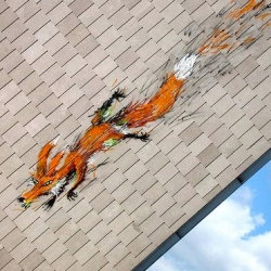 Amazing fox going down the side of a building in Brussels ~ by Bonom