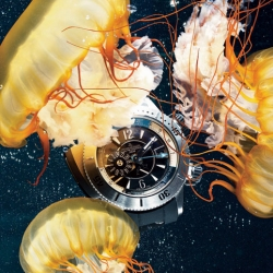 Mens Vogue fashion director Stephen Watson and photographer Raymond Meier's stunning photo shoot, showing off the best in diving watches. Each shot was done inside actual tanks at the Monterey Bay Aquarium.