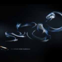 Smoke is Poisonous ~ Clever and informative site describing the perils of secondhand smoke. Good videos too.