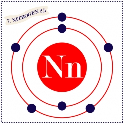 Nn is for Nitrogen is an 8 x 8  individual alphabet print