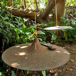 """On interesting door bells ~ check out this one in Venice Beach ~ """"Visitors announce their arrival by striking a mallet on two bronze disks, suspended from the twining branches of the coral tree."""""""