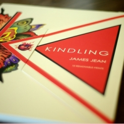 Here's a peek inside James Jean's new book Kindling! Beautiful as always! (Video flip through even!)