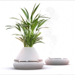 Tab B combines an ashtray with a plant pot. The pot sits on top of the ashtray, concealing it both visually and aromatically. By Vitamin.