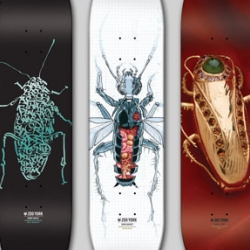 Zoo York presents a nice artist deck series, with 5 recognized artists with a Cockroach theme.