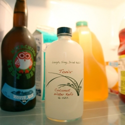 Tonix ~ Coconut Water Kefir ~ it looked so cute when i bought it based on packaging...........