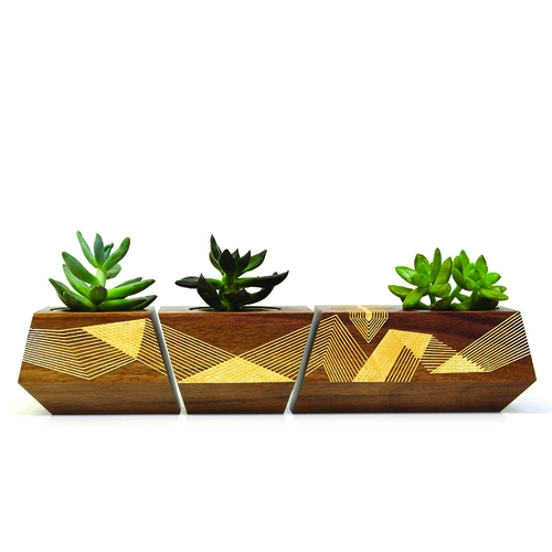 Damien Gilley + Revolution Design House present The Boxcar One Artist Series. Limited Edition Boxcar Planter Set, made in Portland, Oregon.