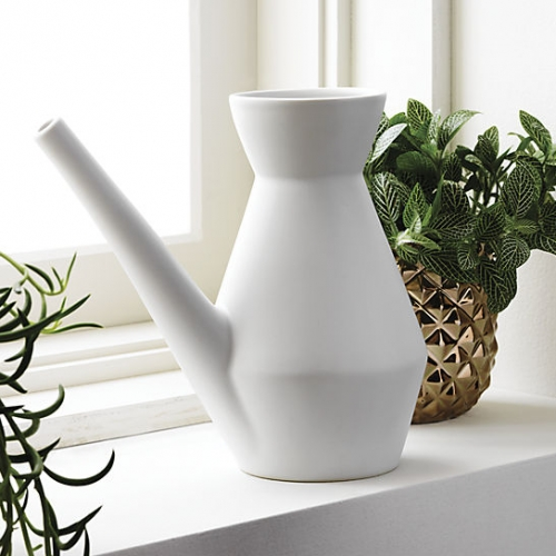 Watering Carafe designed exclusively for CB2 by SAIC student Mathew Devendorf. Made of 100% stoneware with matte white glaze.