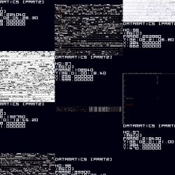 "Ryoji Ikeda's ""Datamatics [ver. 2.0]"" premiered in the US at Harvard last night. The beauty of lots of data!"