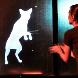 "Karolina Sobecka and James George artistically teamed up to create their ""virtual"" dog SNIFF. SNIFF is a holographic, interactive, fully functional virtual pet whose image will be beamed from Creative Thrift Shop's front windows."