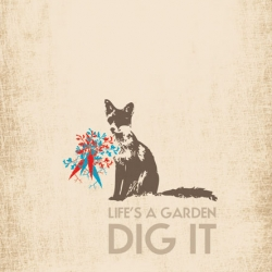 The Garden Fox appears in an inspirational poster by Brooklyn Designer Dave Koehler as a way to stay creative and feel spirited.