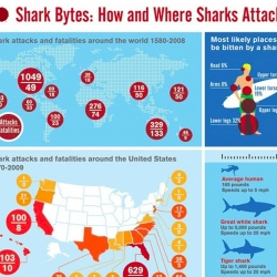 SHARK ATTACK! - an awesome infographic by Chris Rooney.