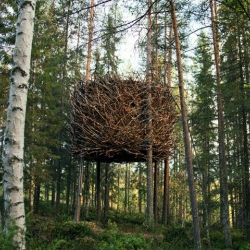 Nowness takes us into the Treehotel - An Eco-Friendly Retreat in Sweden's Enchanted Forest