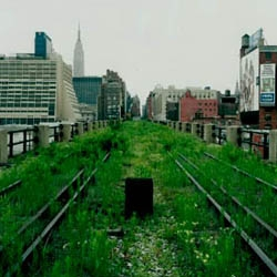 Co-founder of Friends of the High Line, Robert Hammond shares on TED the transformation from abandoned elevated railroad line to one of the hottest spots in New York City.