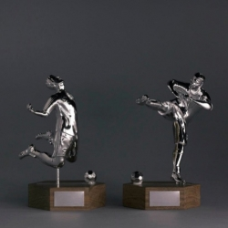 Foul Play Football Trophies : Celebrating Bad Sportsmanship by Wong Wong with the help of Dotsan and Shapeways 3D Printing.