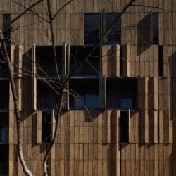 Foreign Office Architects gave bamboo a leading role in the Carabanchel Social Housing project. They based their design on a simple concept that is low-cost, sustainable and playful.