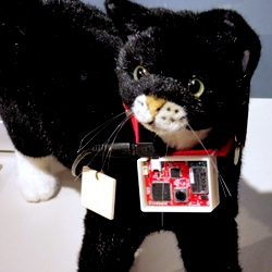Sony Computer Science Laboratories exhibited a life-logging device for cats. The device can be used with the Twitter service and automatically posts comments in accordance with the activities.