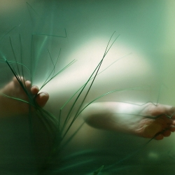 "Conceptual photographer Kalliope Amorphous ""resurrects"" Ophelia in a series of underwater self-portraits."