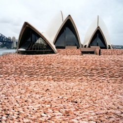 Spencer Tunic's latest project: 5000 nudes at the Sydney Opera House