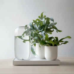 Tableau, an automatic house plant watering tray by Pikaplant. Its ebb-and-flow tech mimics nature to water your plants in a wet-dry cycle. Staying true to nature, it works using zero electricity.