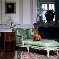 KAREN KNORR. FABLESSTORIES - eighteen great photographic works and a video of the Fables series. An evocative and silent dialogue between nature and culture at the Contemporary Museum of Photography.