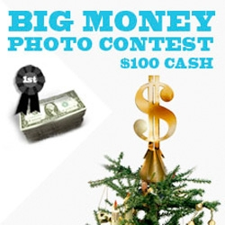 "Our friends at Design Glut are having a ""Big Monday"" contest... literally! Photo contest with their *free* tree topper!"