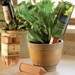 Wine bottle plant nannies ~ the age old concept of letting the plants absorb only the water they need, as they need it through the terracotta ~ only this time it's also a fun way to reuse your fav wine bottles!