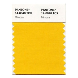 Mimosa or, PANTONE® 14-0848 - the colour of 2009?