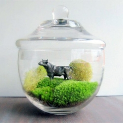 """Made By Mavis has a cute """"large moss terrarium with pewter bull"""""""