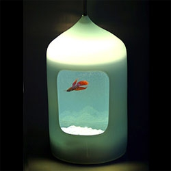 "The fish light. designed by j.parker 2005 for Esque in blue+white, round or square 24""to 28"""
