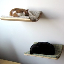 a sleek pet bed--- satisfying the needs of both you and the pet.
