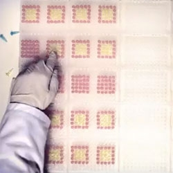 Stop-motion animation created with over 6,000 PCR-tubes and 30 plates.