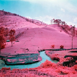 "Richard Mosse's collection ""Infra,"" on display at NYC's Jack Shainman Gallery."