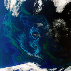 Envisat image from ESA of a phytoplankton bloom swirling in a figure-of-8 in the South Atlantic Ocean.