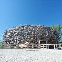 Beautiful Czech equestrian center, Stork Nest Farm by SGL Projekt.