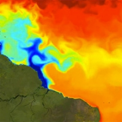 Numerical simulation showing the variation of salinity in the Atlantic Ocean near the mouth of the Amazon River over 3 years. Mesmerizing to watch salt and freshwater mix. Data provided by Mercator Ocean and animation by Mira Production.