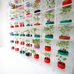Growing cress in bottlecaps, turning your recycling into a hydroponics setup and other highlights from the Environment section at the Chelsea Flower Show.
