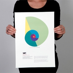 Lora Bojinova's Fibonacci poster series for a fictional Tate exhibition on geometry in nature.