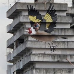 The Cardillo of Scampia, a giant street art  goldfinch you can ride!