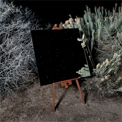 The Edge Effect, 2012 by Daniel Kukla inspired by glimpses of the border space created by the meeting of distinct ecosystems in Joshua Tree National Park.