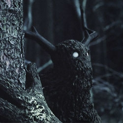 Gloam, a short film by David Elwell & Gareth Hughes about  a solitary creature wandering in the dark forest as it encounters something unknown with only curiosity to lead the way.