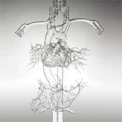 Wired on the art of anatomical models made from glass. Beautiful slideshow!