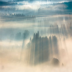 Boguslaw Strempel's beautiful misty landscapes.