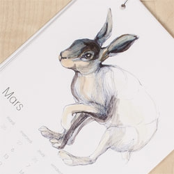 Gorgeous illustrated calendar of animals for 2013 by Krisztina Vona.