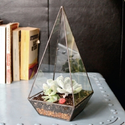 Amanda Guarini's Glass Garden project. Beautiful terrariums, identity and branding!