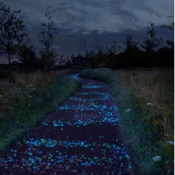 Daan Roosegaarde proposal the Van Gogh Bicycle Path will run where Vincent Van Gogh lived from 1883 to 1885 in Eindhoven recreating the Starry Night paintings.