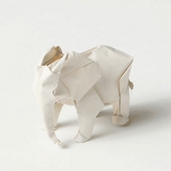 Sipho Mabona plans to fold a life-sized origami elephant.