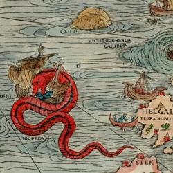 A look at the Sea Serpents of Olaus Magnus.